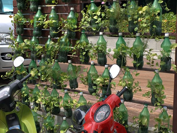 Plastic Bottles Are Recycled And Used To Grow Flowers Brighten Up Streets In Bangkok
