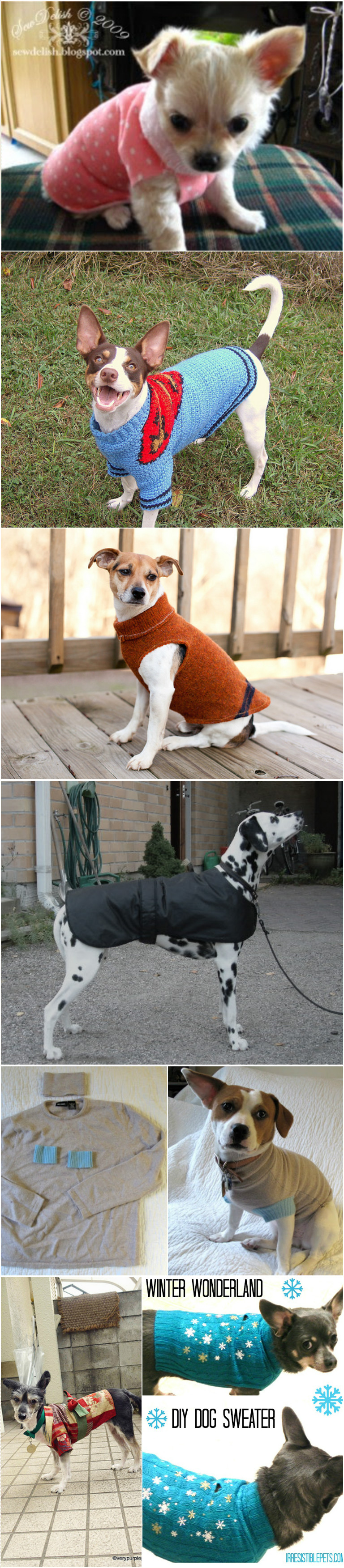 How To Make Diy Dog Sweaters 25 Awesome Ways Pondic
